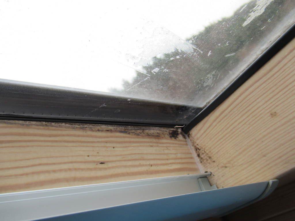Pleśń na oknach, dlaczego skrapla się woda na szybach