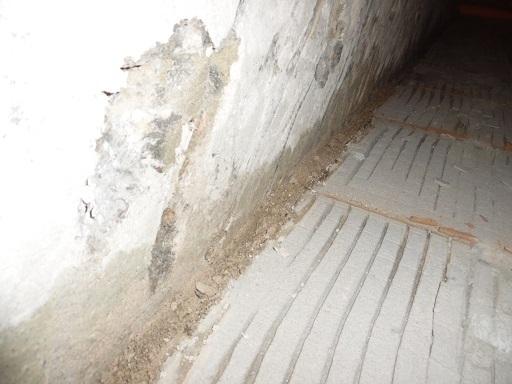 wilgoc na scianie przy podlodze w lazience