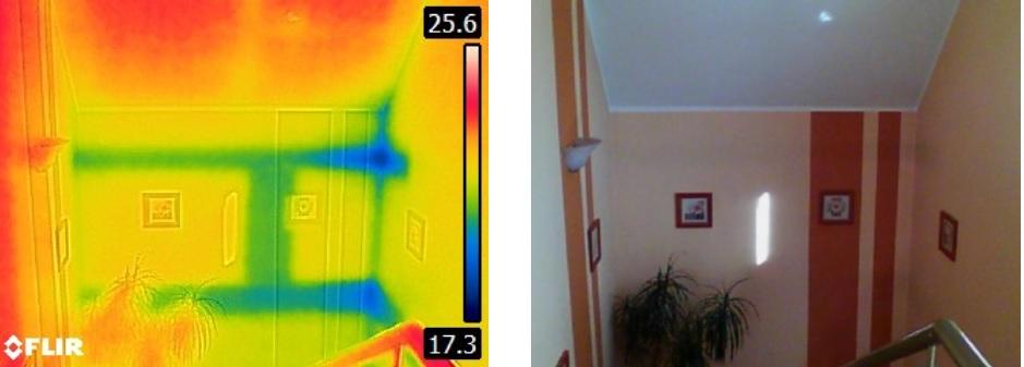 interpretacja obrazu z kamery termowizyjnej