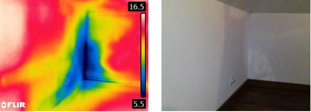interpretacja zdjęcia termowizyjnego z badania - termowizja Poznań